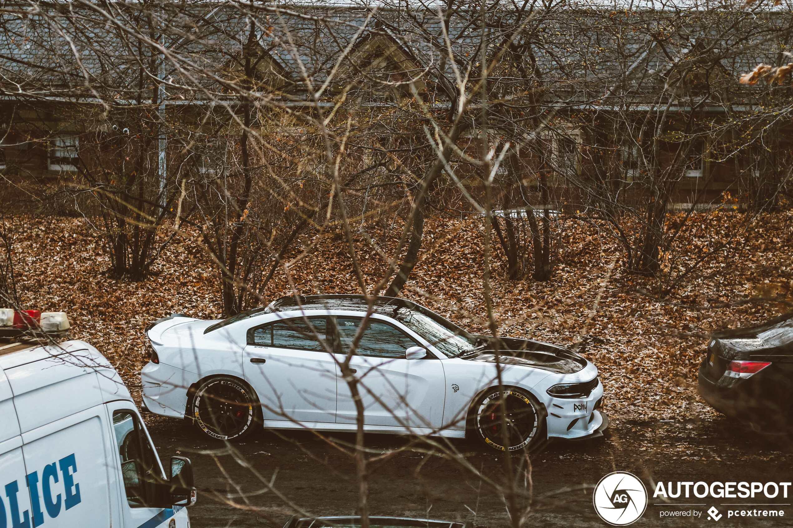 Dodge Charger Srt Hellcat 2015 13 January 2020 Autogespot