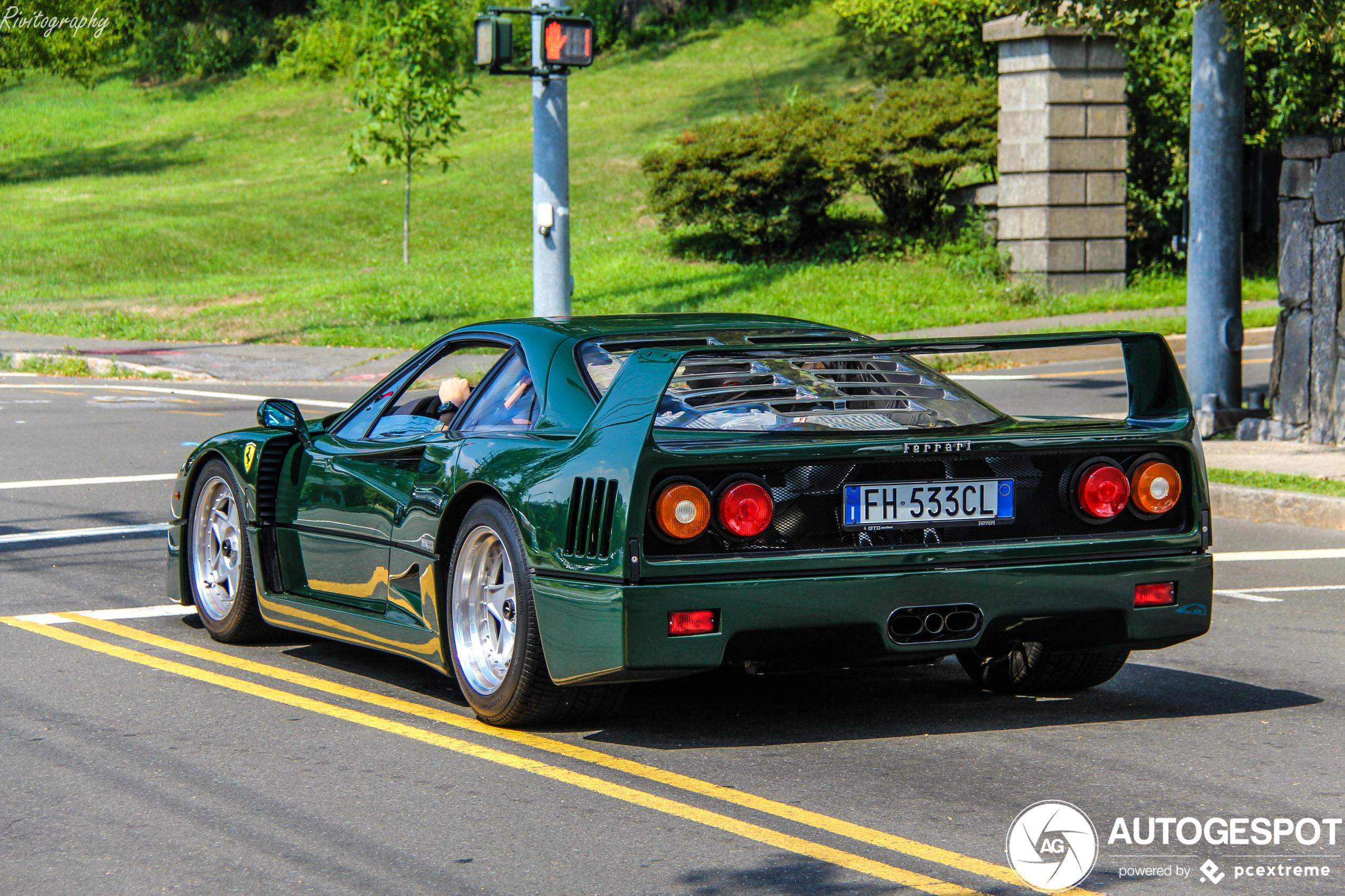 Topspot: Ferrari F40 in Verde Abetone